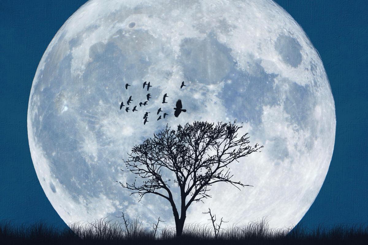 Moon - skywatch v1