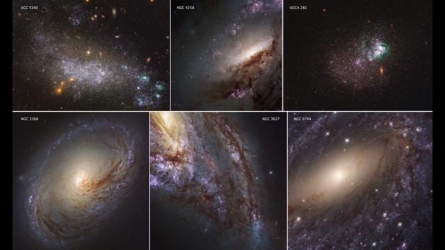 LEGUS Galaxies v1